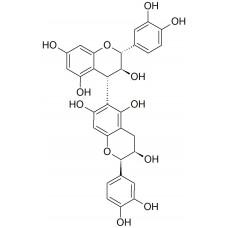 Procyanidin B8